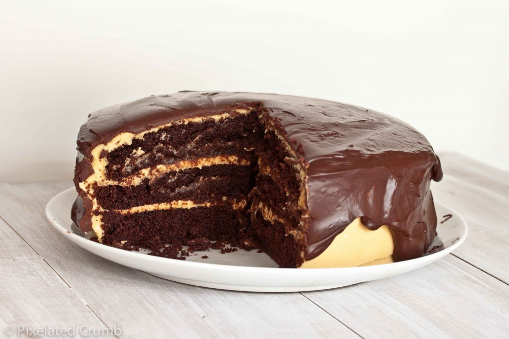 ultimate chocolate peanut butter cake 2 1024x682 the ultimate chocolate peanut butter cake