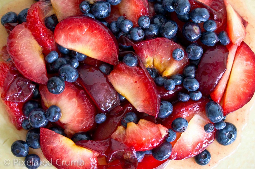 pluot blueberry galette 3 1024x681 pluot and blueberry galette