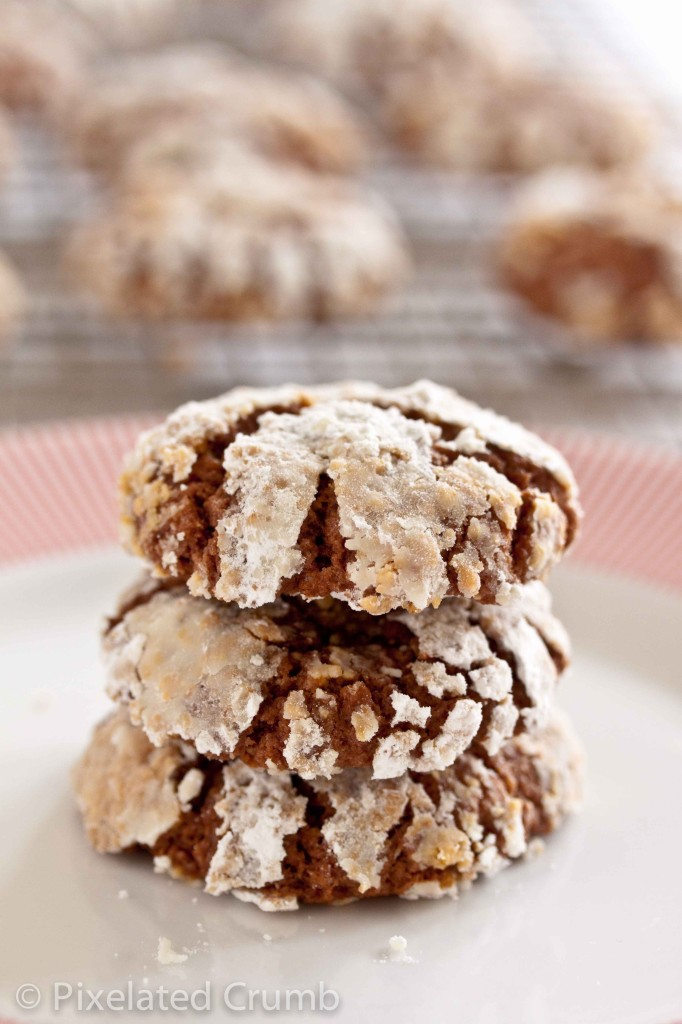 Chocolate Nutella Cookies | Pixelated Crumb